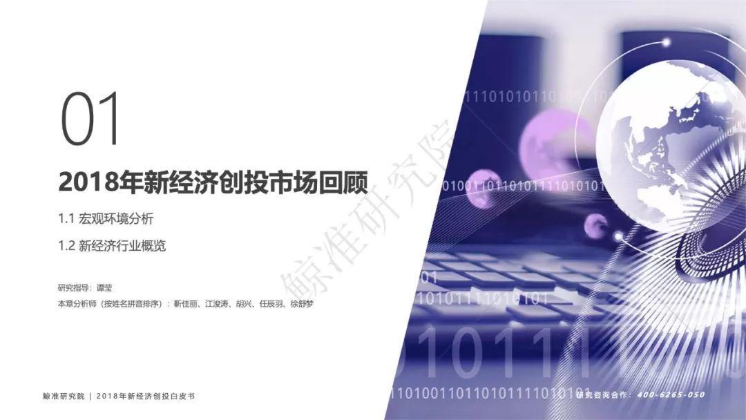 鲸准研究院:2018中国新经济创股白皮书(213页)
