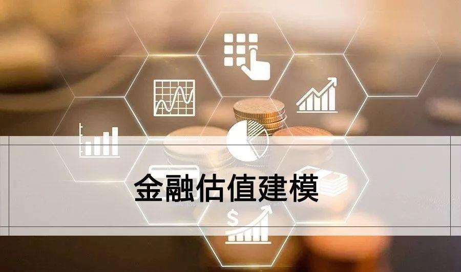 金融估值建模培训资料(99份)