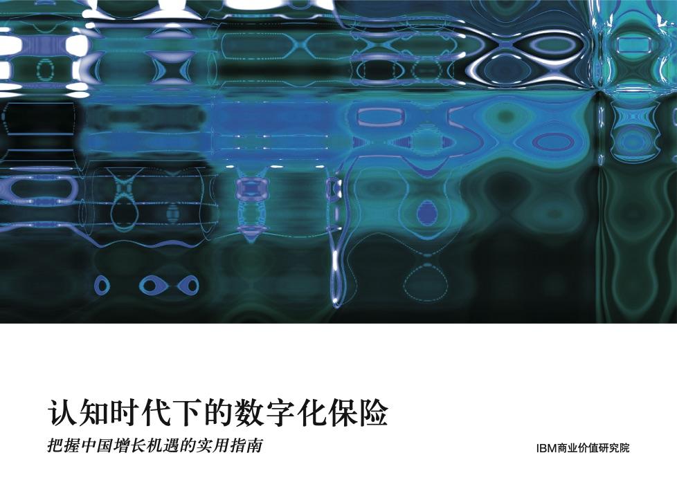 IBM咨询报告